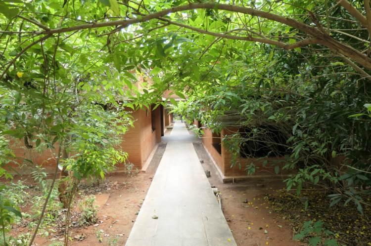 Vaidyagrama pathway